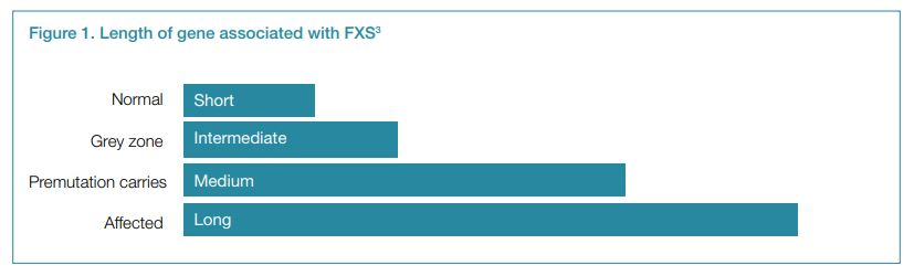Figure 1. Length of gene associated with FXS