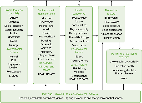 Figure 2. The determinants of health and illness
