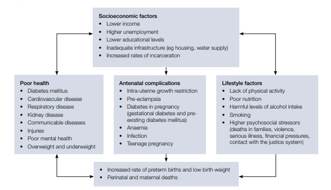 Figure 1. Factors that influence pregnancy outcomes in Aboriginal and Torres Strait Islander women