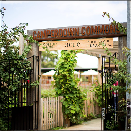 Camperdown Commons