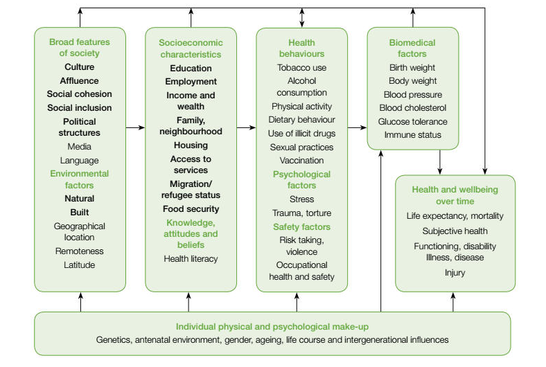 The determinants of health and illness