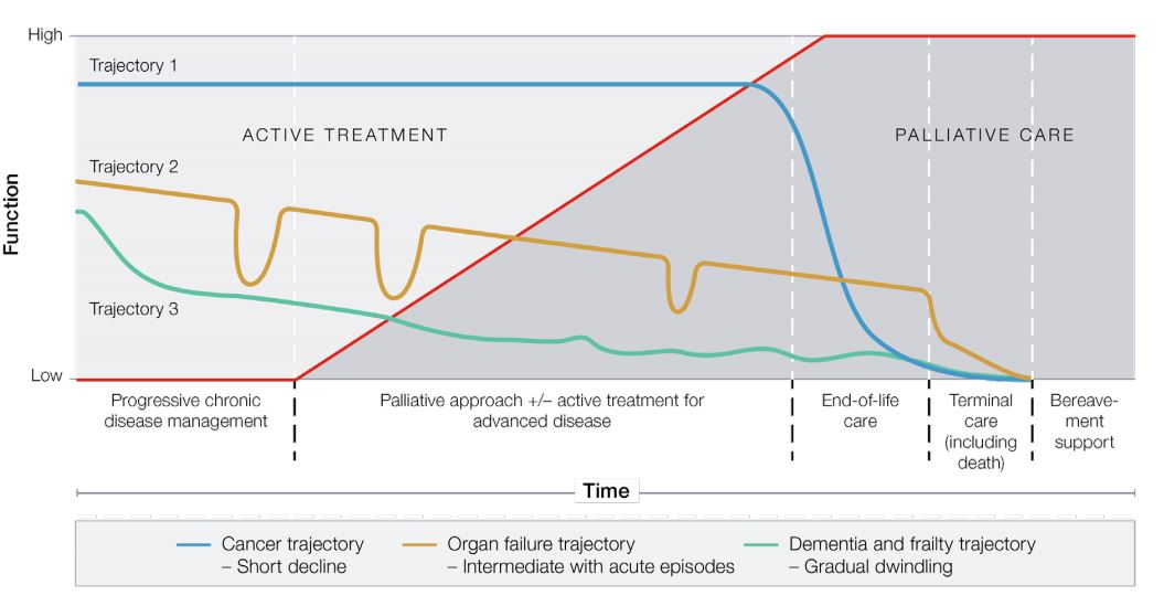 Figure 1. Typical illness trajectories and palliative care phases towards the end of life